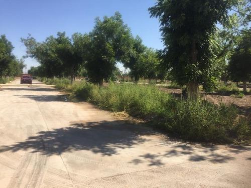 terreno en venta en rancho la barranca