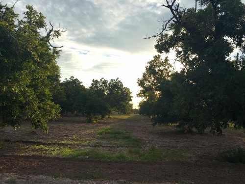 terreno en venta en rancho la barranca, torreón