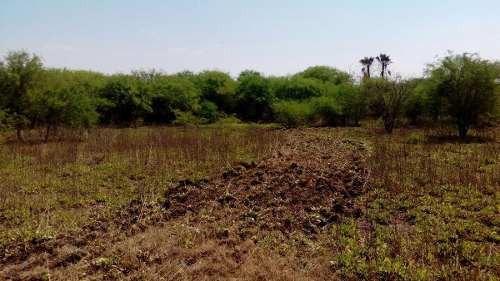 terreno en venta en rio verde (por canal a la media luna)