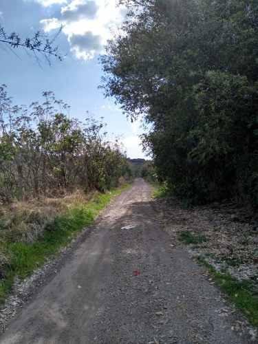 terreno en venta en san agustín, tlajomulco de zuñiga