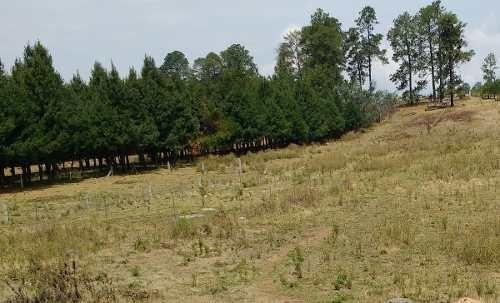 terreno en venta en san bartolo, amanalco
