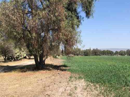 terreno en venta en san josé iturbide