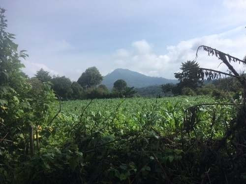 terreno en venta en san juan atezcapan