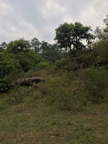 terreno en venta en santiago nuevo león