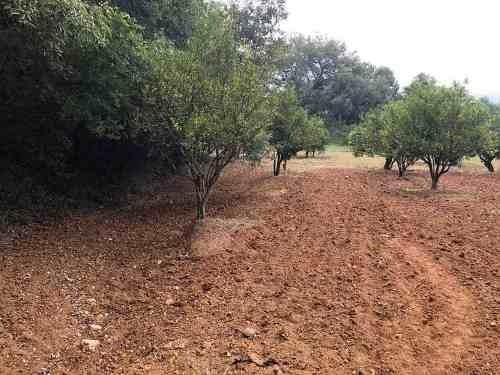 terreno en venta en santiago nuevo leon san francisco
