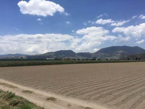 terreno en venta en tenango del valle sobre carretera 1.5 he