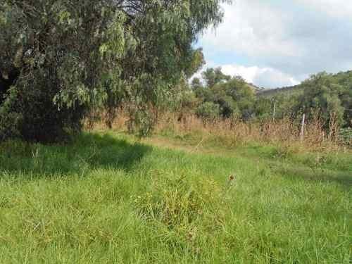 terreno en venta en tepetitlan, chiautla itv-3623