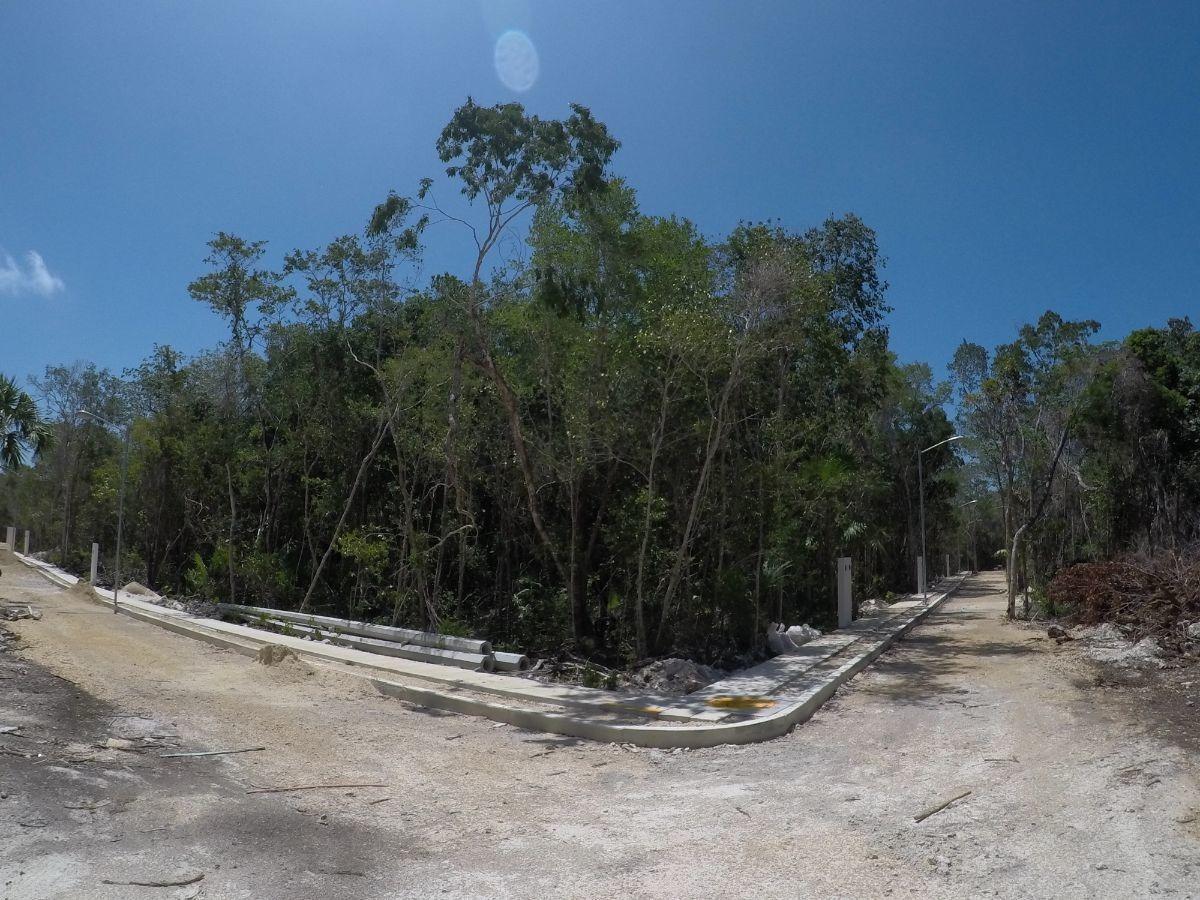 terreno en venta en tulum, cocoloba