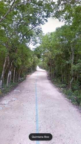 terreno en venta en tulum, frente a cenote dos ojos