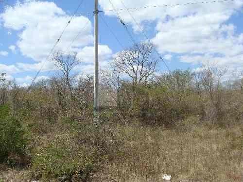 terreno en venta en uman yucatan a orilla de carretera con flujo vehicular alto de 55355 mts