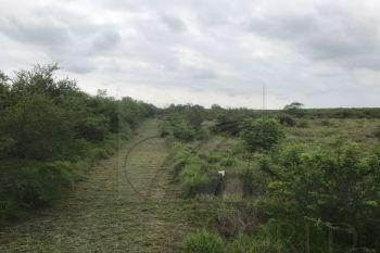 terreno en venta en valle del roble, monterrey