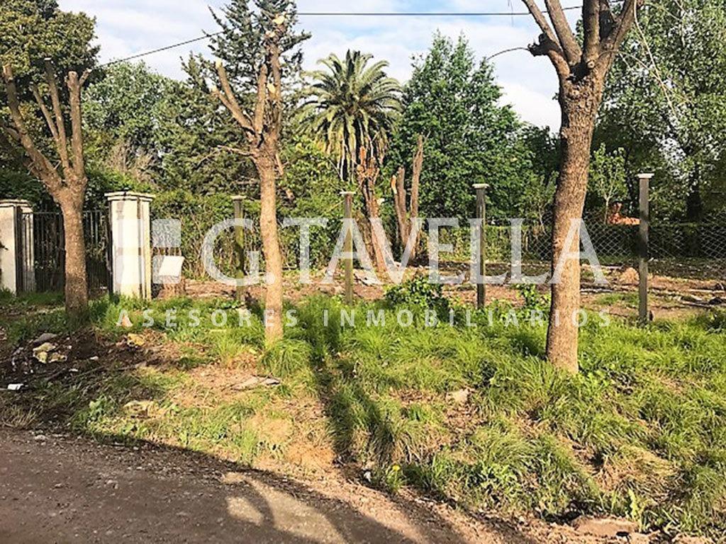 terreno en venta en villa udaondo