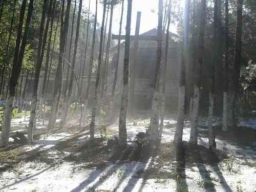 terreno en venta en zona boscosa, ideales para construir tu cabaña de descanso,