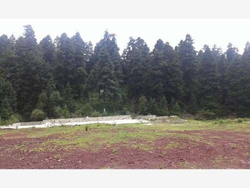 terreno en venta fracc campestre en real del monte