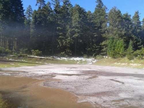 terreno en venta fracc residencial campestre, lotes en zona boscosa. financiamiento