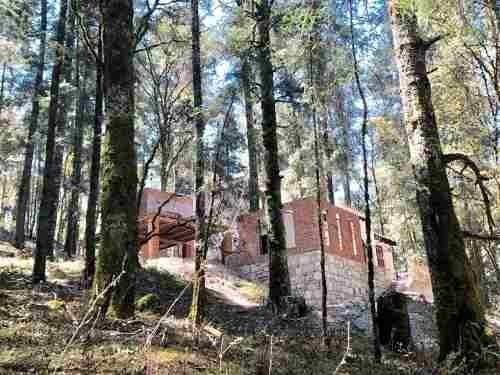 terreno en venta fraccionamiento en zona boscosa, un lugar hermoso que enamorara tus sentidos
