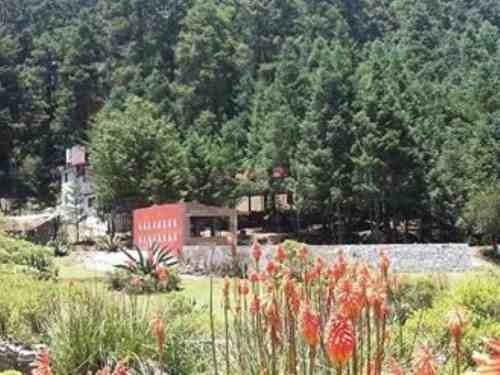 terreno en venta fraccionamiento residencial campestre, lotes en zona boscosa