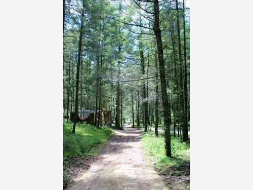 terreno en venta hermoso fraccionamiento campestre, rodeado por el bosque de real del monte