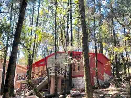 terreno en venta hermoso fraccionamiento dentro del bosque! si del bosque! lotes en venta