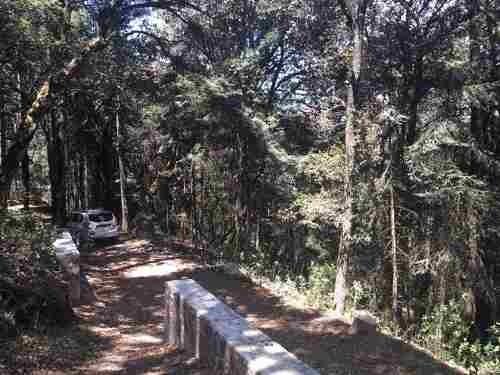terreno en venta hermoso fraccionamiento en el bosque, real del monte hgo.
