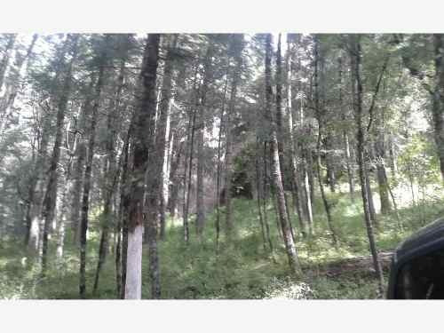 terreno en venta hermoso lugar privilegiado por la naturaleza, en el mágico pueblo de real del mo