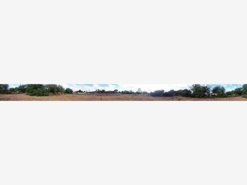 terreno en venta hidalgo