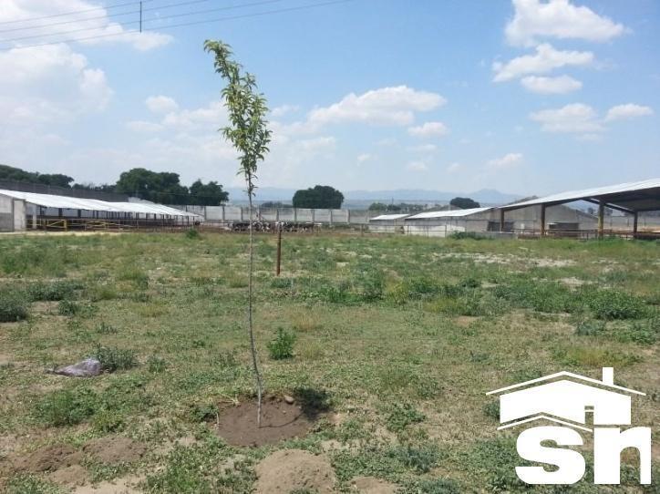 terreno en venta huamantla - tlaxcala st-1817