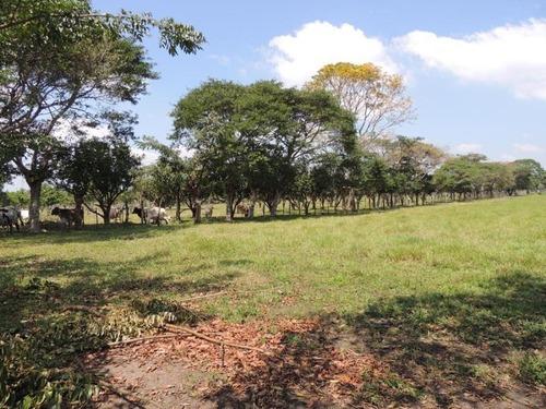 terreno en venta huimanguillo