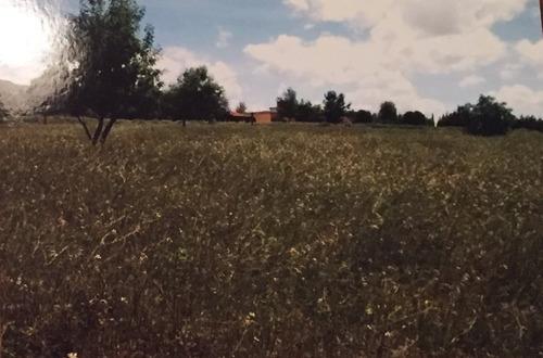 terreno en venta jiadi hidalgo