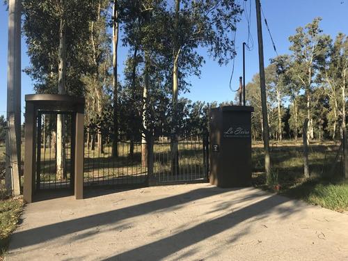 terreno en venta la plata la elvira calle 13 y 600 dacal bienes raices