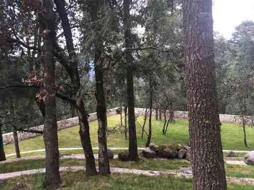 terreno en venta la zona boscosa del pueblo mágico de real del monte
