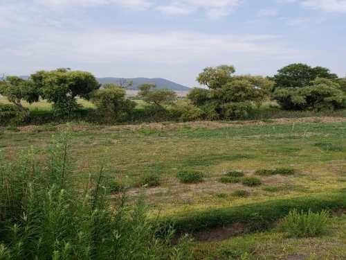 terreno en venta lindero amealco