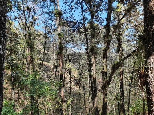 terreno en venta lomas de huitepec