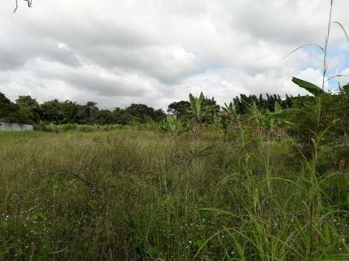terreno en venta los pinos
