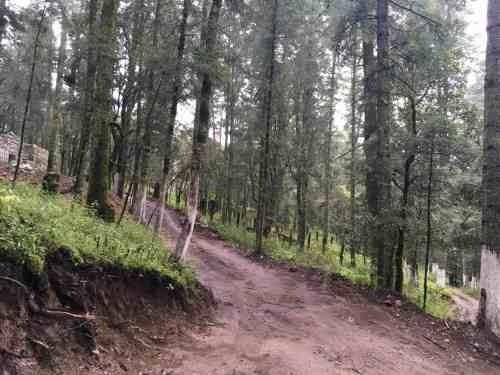 terreno en venta lotes campestres residenciales con financiamiento, zona boscosa
