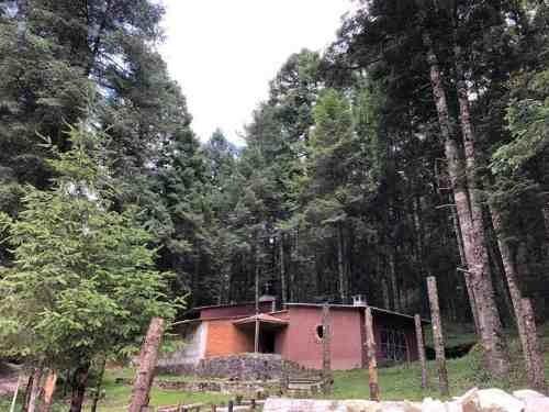 terreno en venta lotes dentro de zona boscosa en hidalgo. fracc privado damos crédito
