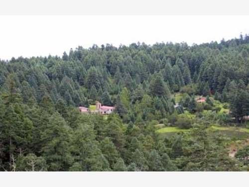 terreno en venta lugar privilegiado por la naturaleza, en el mágico pueblo de real del monte