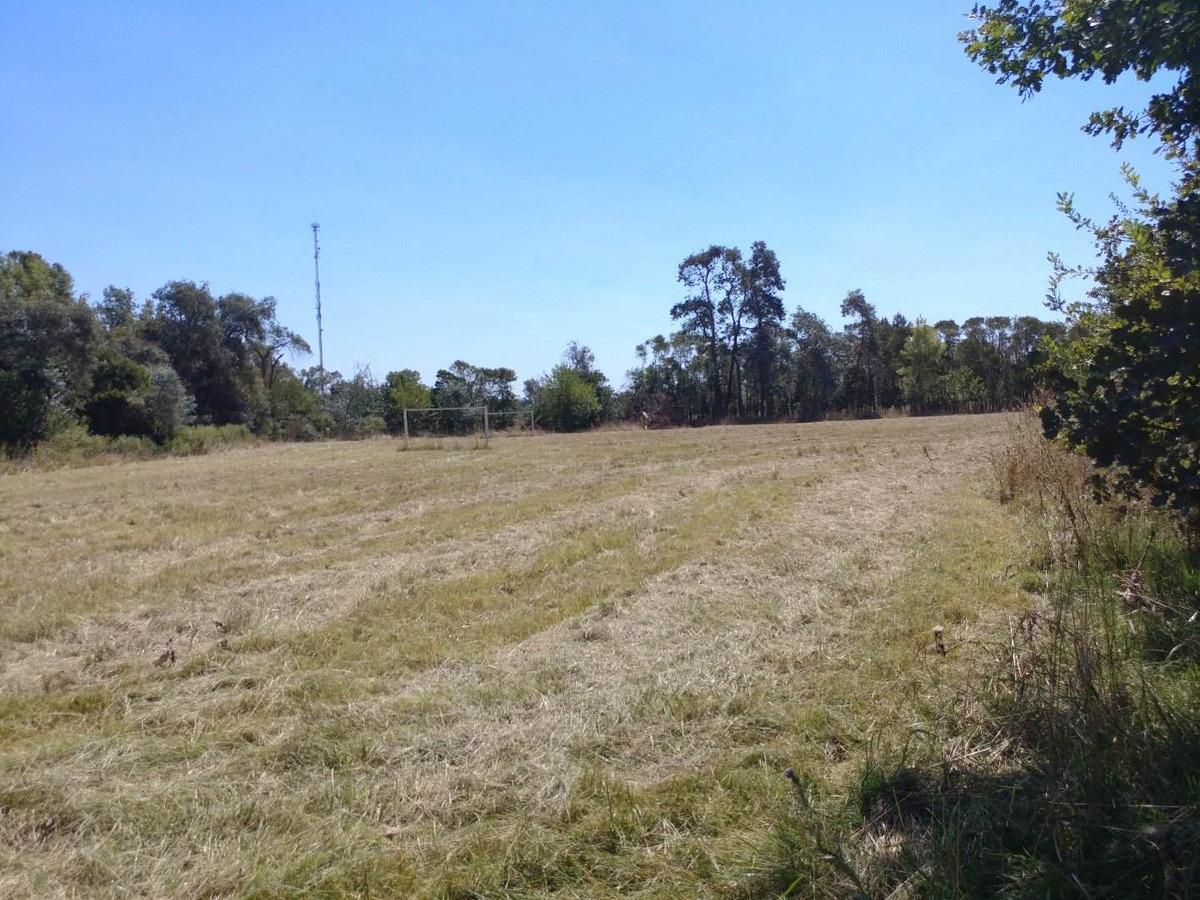 terreno en venta lujan olivera colectora ruta 5