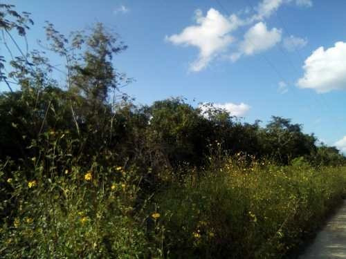 terreno en venta - mahahual - othon p. blanco