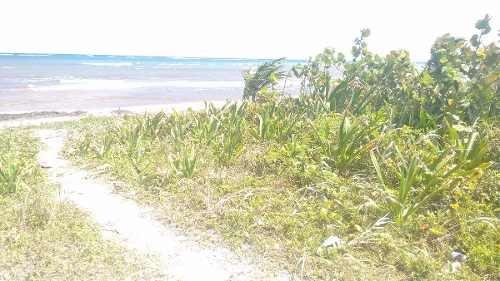terreno en venta - mahuhual - quintana roo