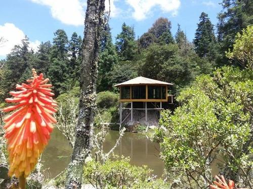 terreno en venta mineral del monte, terrenos con financiamiento en zona boscosa
