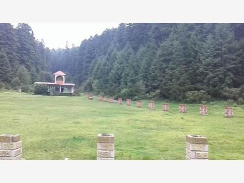 terreno en venta no busques más, nos has encontrado, bosque encantado en real del monte, hgo.