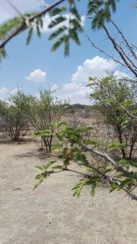 terreno en venta, norias del  ojocaliente, ags. ttv 259355