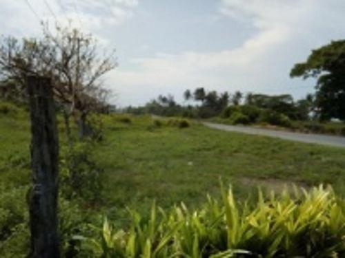 terreno en venta paseos del sol