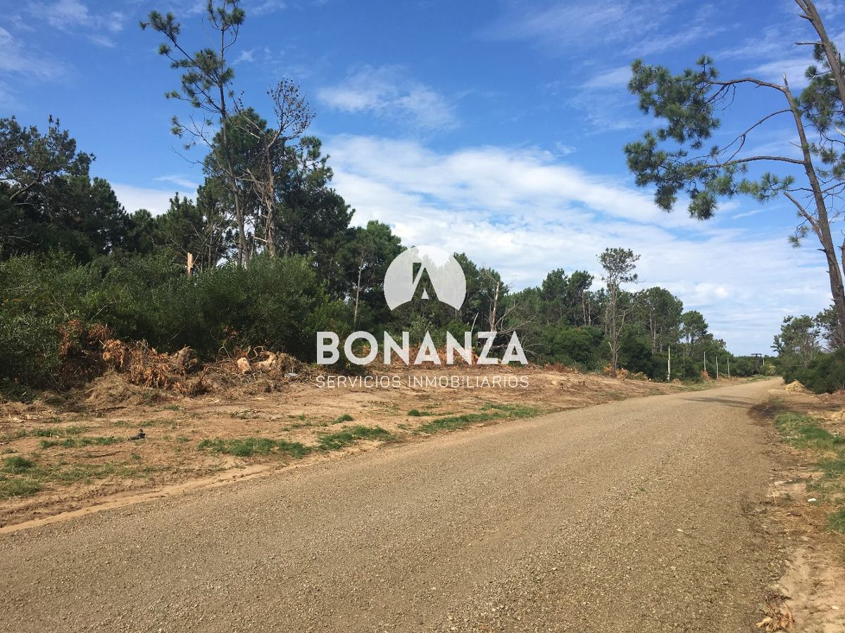 terreno en venta, piriapolis, punta colorada, 1000 m²