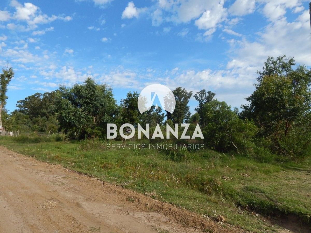 terreno en venta, piriápolis, punta colorada, 1000 m²