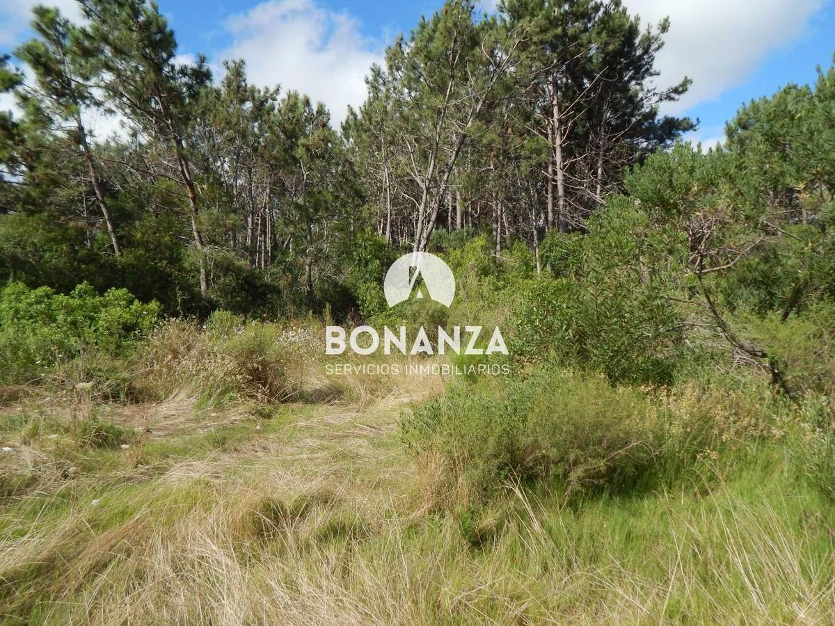 terreno en venta, piriápolis, punta colorada, 1000m²