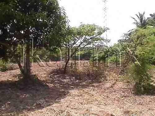 terreno en venta playa tuxpan veracruz