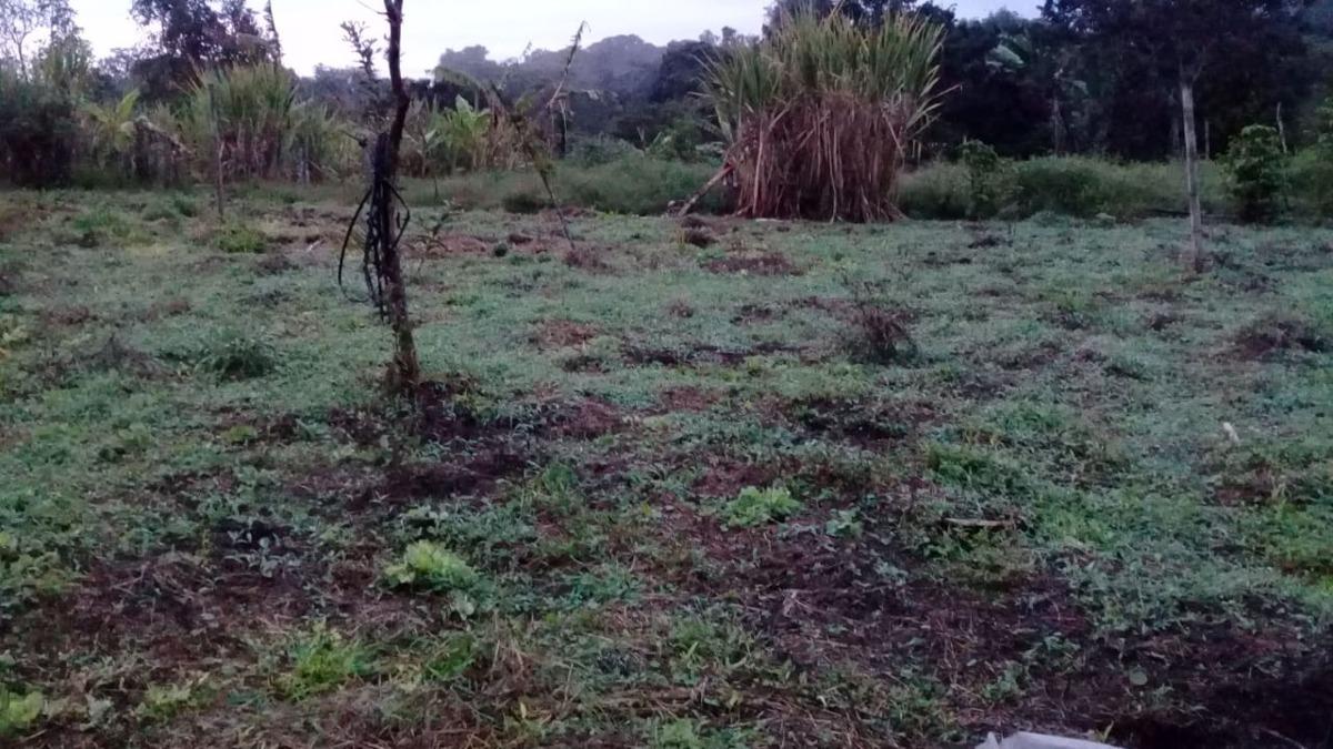 terreno  en venta popayan  vereda calibio