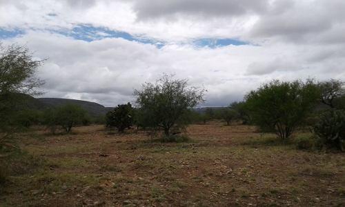 terreno en venta por santa maria del rio (s.l.p)